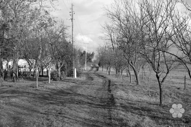 Jókai Mór utca (Photo: Sihelnik József)