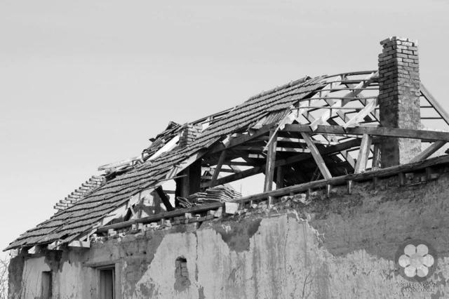 Szélfútta tető (Photo: Sihelnik József)