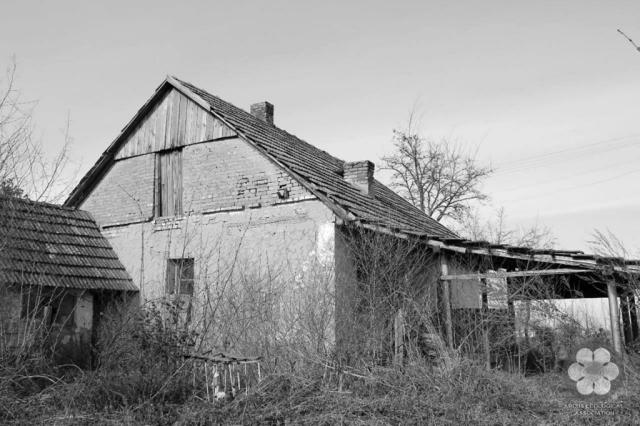 Hanyatlóban (Photo: Sihelnik József)