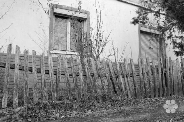 Kitartó kerítés (Photo: Sihelnik József)