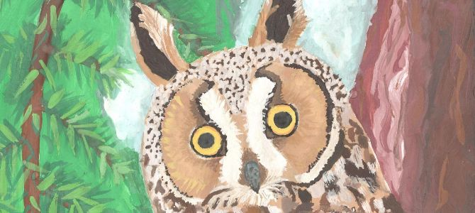 Természetismereti rajzpályázat 2018 – díjazott alkotások