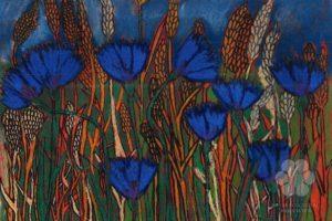 Kék búzavirág (Illustration: Deák Viola)
