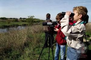 Posmatranje ptica (Photo: Sihelnik József)