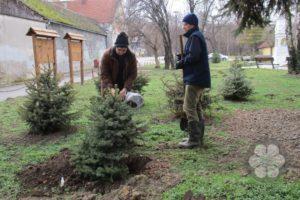 Akcija sadnje drveća (Photo: Sihelnik Ágnes)