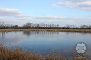 Zobnatičko jezero (Photo: Sihelnik József)