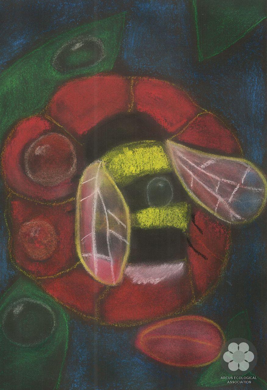 V-VIII razred - Vago Žombor, Specijalna nagrada za najbolji umetnički prikaz